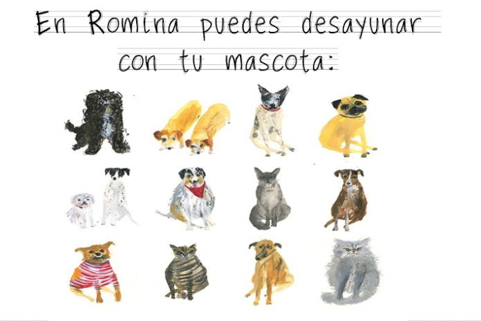 mascotas romina